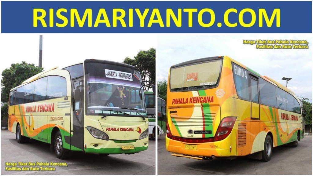 Harga Tiket Bus Pahala Kencana, Fasilitas dan Rute Terbaru 2020